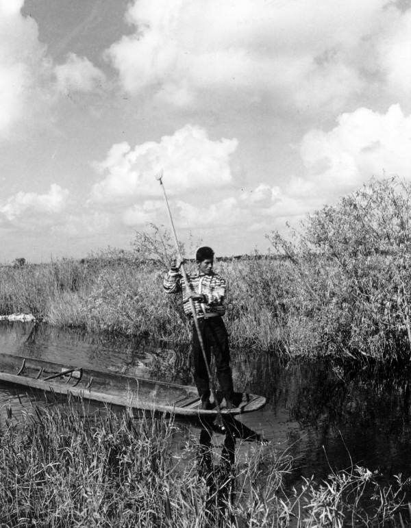 Seminole Tommy Tiger paddles through the Everglades water, Florida